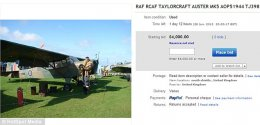 Advert: The eBay page for the plane, but the £4, 000 reserve has not yet been met