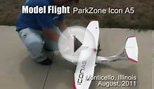 ParkZone Icon A5 RC Plane.avi