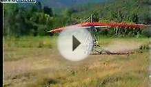 ultralight plane: Freak accident